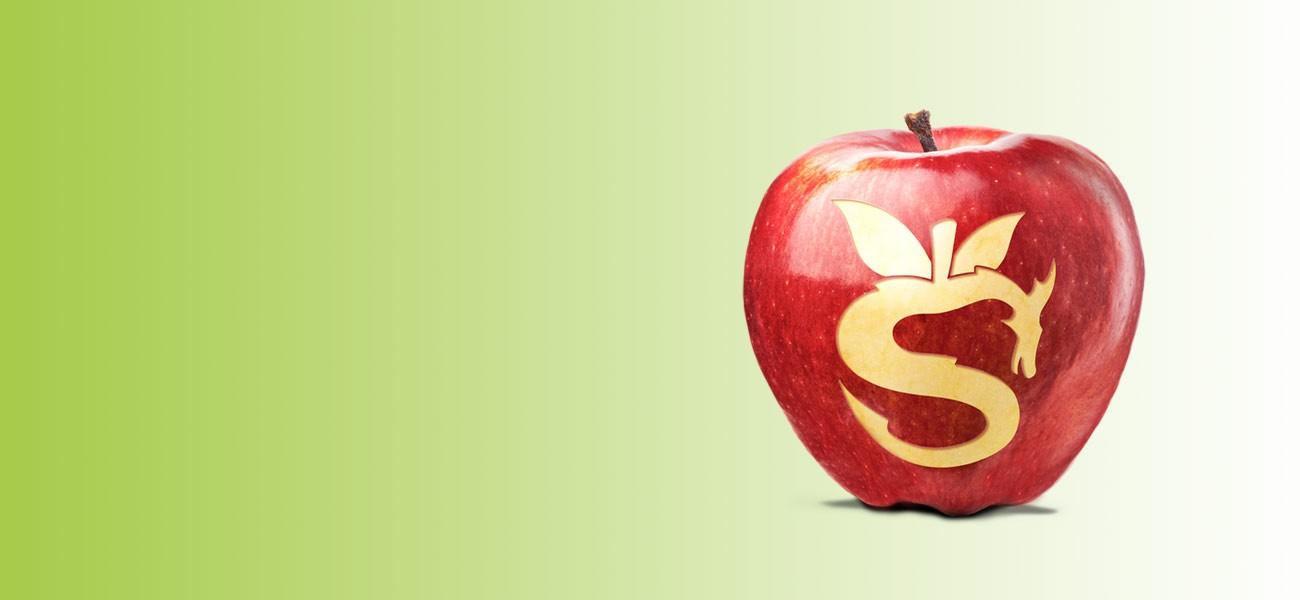 Snapdragon<sup>®</sup>